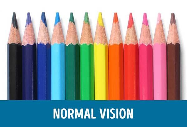 1-penglihatan-normal